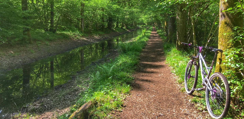 Cranleigh Canal loop